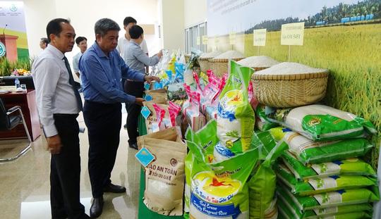 """gao ruong nha minh Ra mắt gạo sạch """"ruộng nhà mình"""" đạt tiêu chuẩn ISO 9001:2015"""